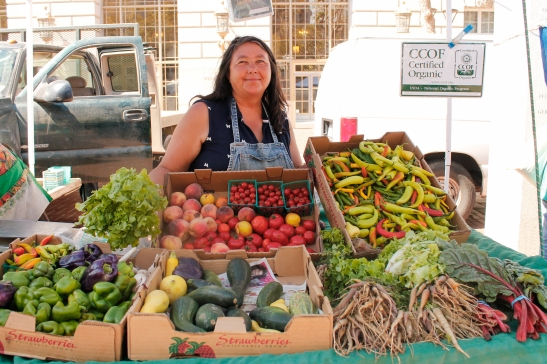 Grace Teresi of Miramonte Farms says her vegetables are firmer and less juicy, but as good as before the drought. (Photo by Elisabetta Silvestro/Bay News Rising)