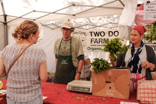 Mark Bartle of Two Dog Farm and an employee Tallia help a customer at the Heart of the City Farmers' Market. (Photo by Elisabetta Silvestro/Bay News Rising)
